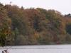 herbstlaub-eutiner-see