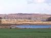 naturschutzgebiet-kuehrener-teich